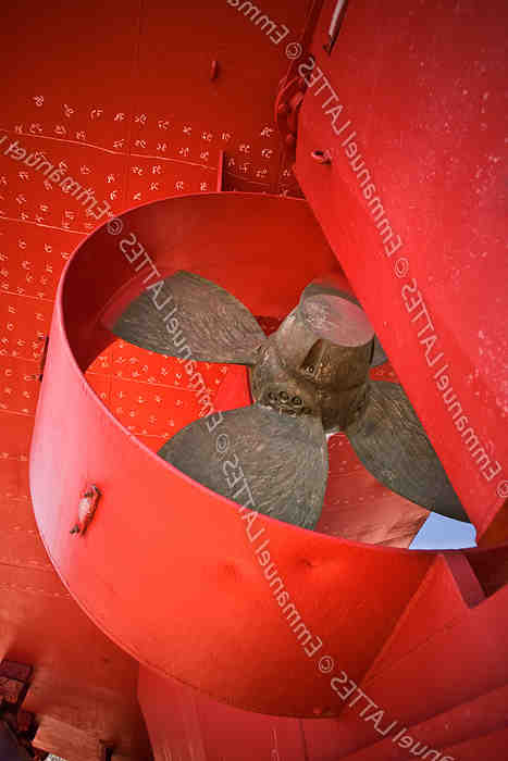 Comment conserver les palourdes fraîches?