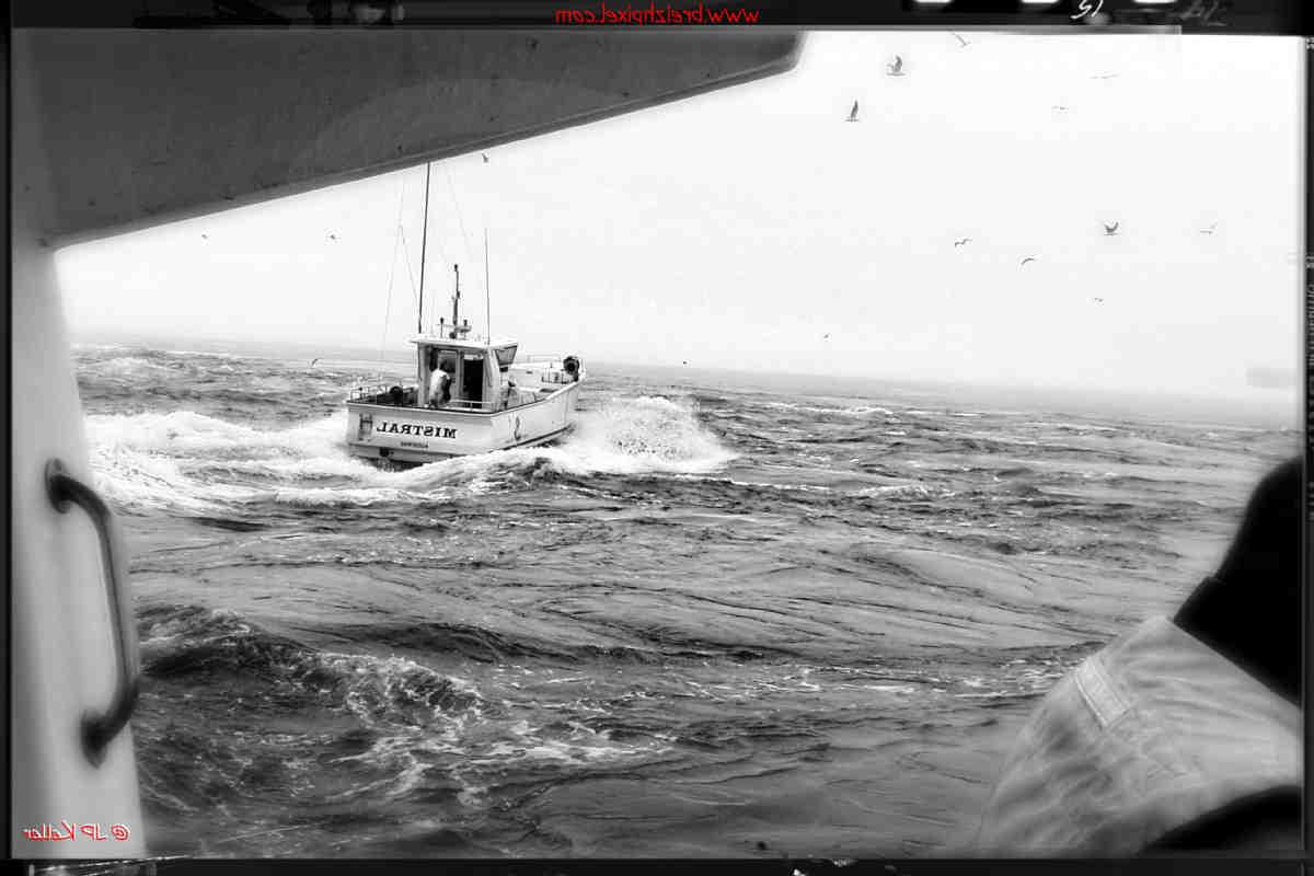 Comment pêcher les appâts de pêche?