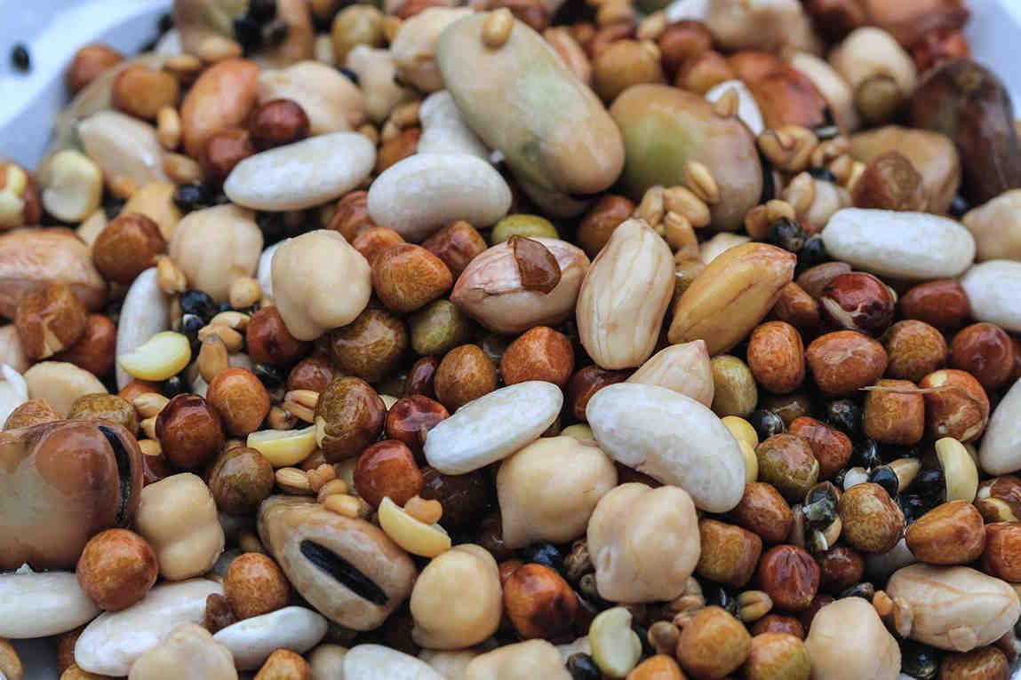 Comment conserver du blé cuit pour la pêche ?