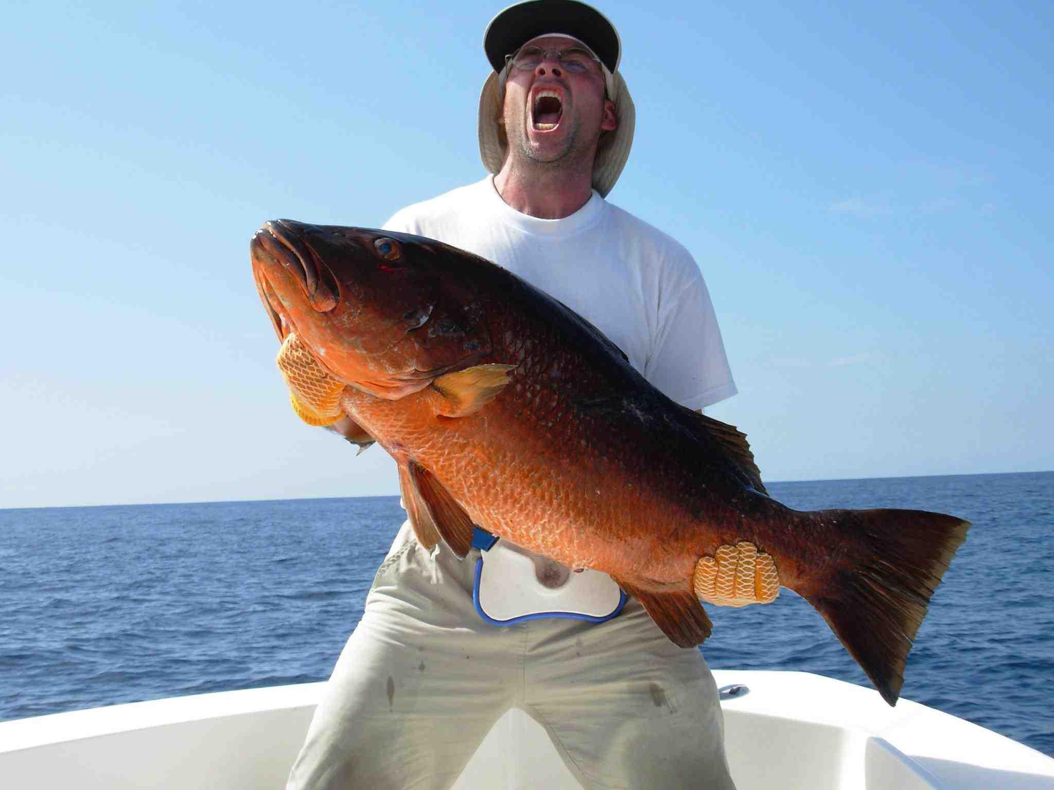 Comment trouver un bon coin de pêche en mer ?