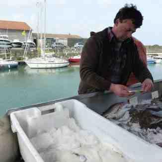 Est-ce que la pêche tâche ?