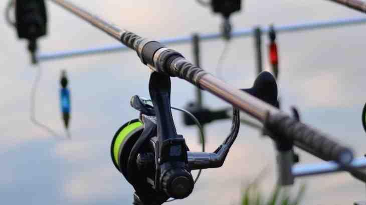 Quel diamètre de fil pour la pêche en mer ?